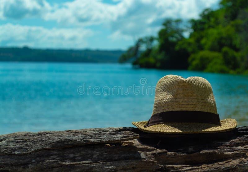 O chap?u dos homens ? um log ? esquerda Seascape bonito fotos de stock royalty free