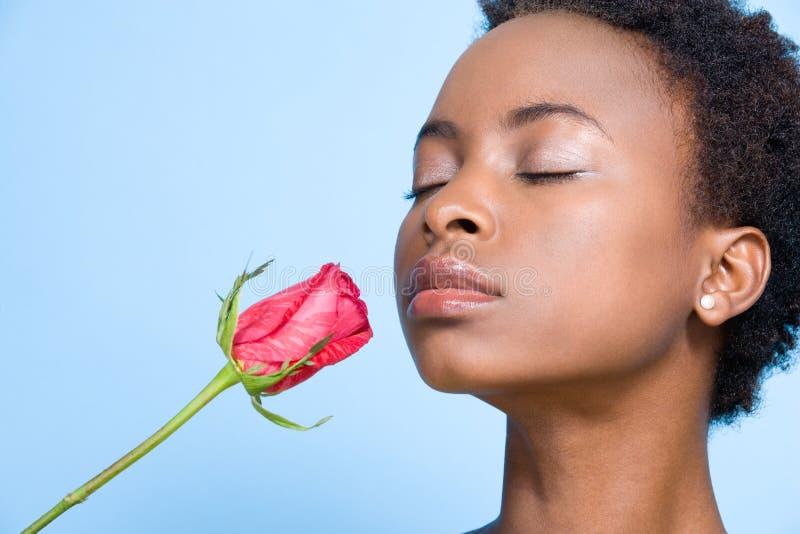 O cheiro da mulher aumentou fotos de stock