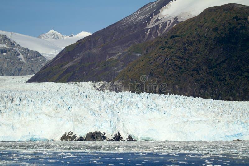 O Chile - Amalia Glacier In Sunny Day foto de stock royalty free