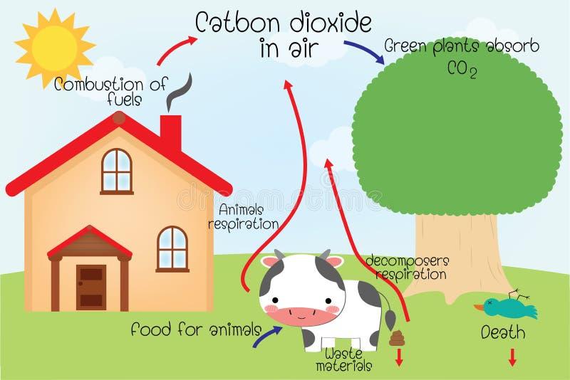 O ciclo de carbono ilustração royalty free