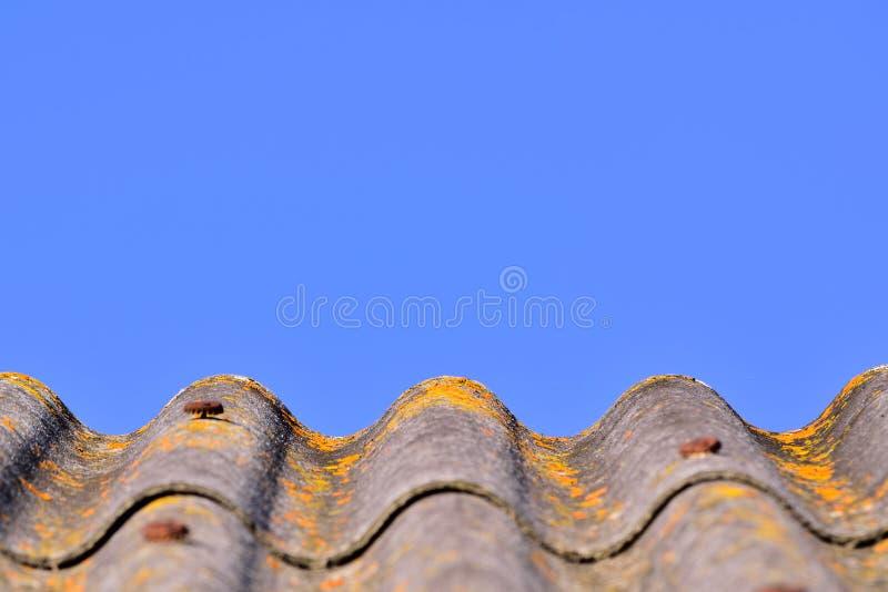 O cinza curvado shingled o telhado com musgo amarelo contra o céu azul claro imagem de stock