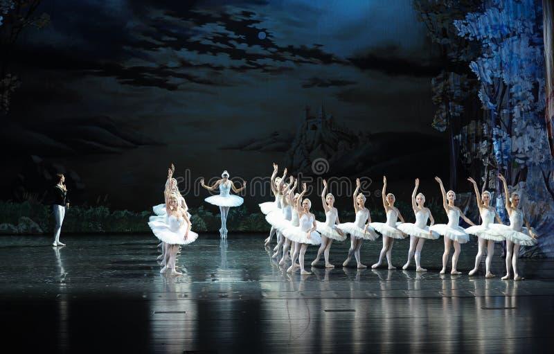 O cisne-bailado branco o mais bonito O Lago das Cisnes imagem de stock
