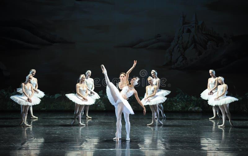 O cisne-bailado branco o mais bonito O Lago das Cisnes imagem de stock royalty free