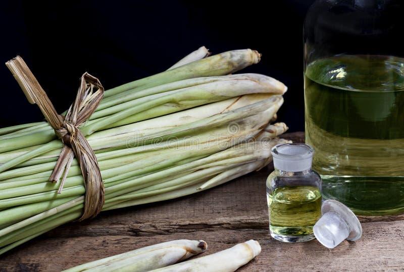 O citratus e o nardo de Cymbopogon do nardo lubrificam no vidro BO imagem de stock royalty free