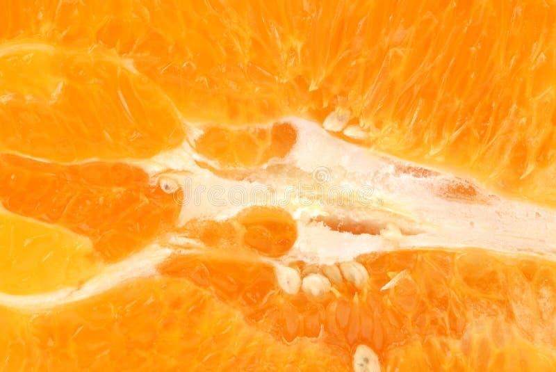 O citrino paradisi ou fruto do close up da fatia da toranja fotografia de stock royalty free