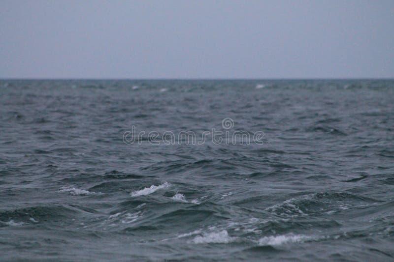 O close up acena o mar de Key Biscayne foto de stock