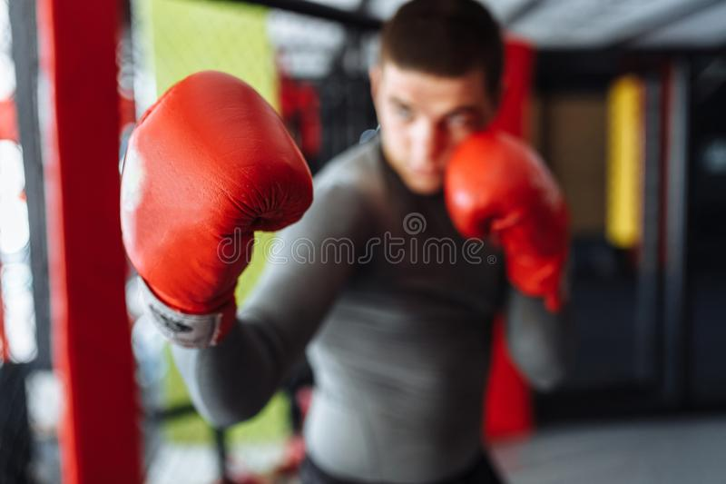 O close-up da luva de encaixotamento, o pugilista masculino contratou no treinamento no gym, em uma gaiola para uma luta sem regr fotos de stock royalty free