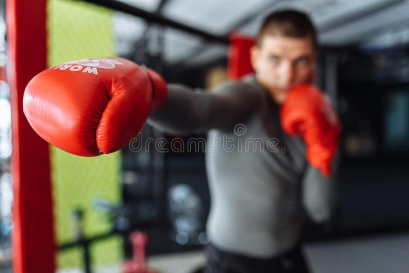 O close-up da luva de encaixotamento, o pugilista masculino contratou no treinamento no gym, em uma gaiola para uma luta sem regr imagem de stock