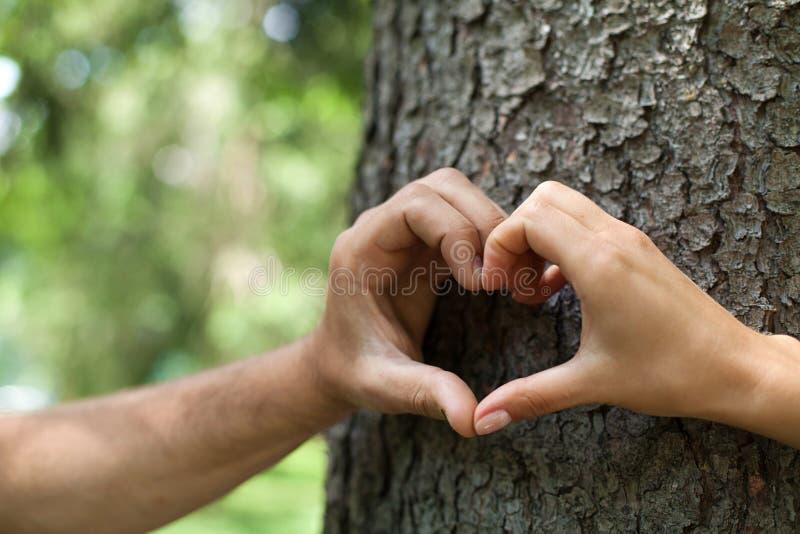 O close-up das mãos humanas que fazem o coração dá fôrma na parte dianteira imagens de stock