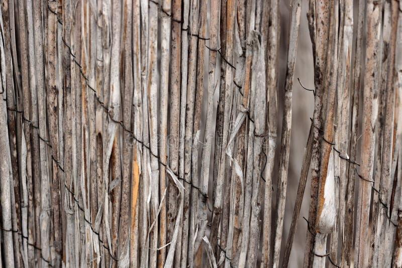 O close-up de bambu do rattan do vintage de uma cerca vestida retro dilapidada manteve unida com fio oxidado uma textura do fundo fotografia de stock royalty free
