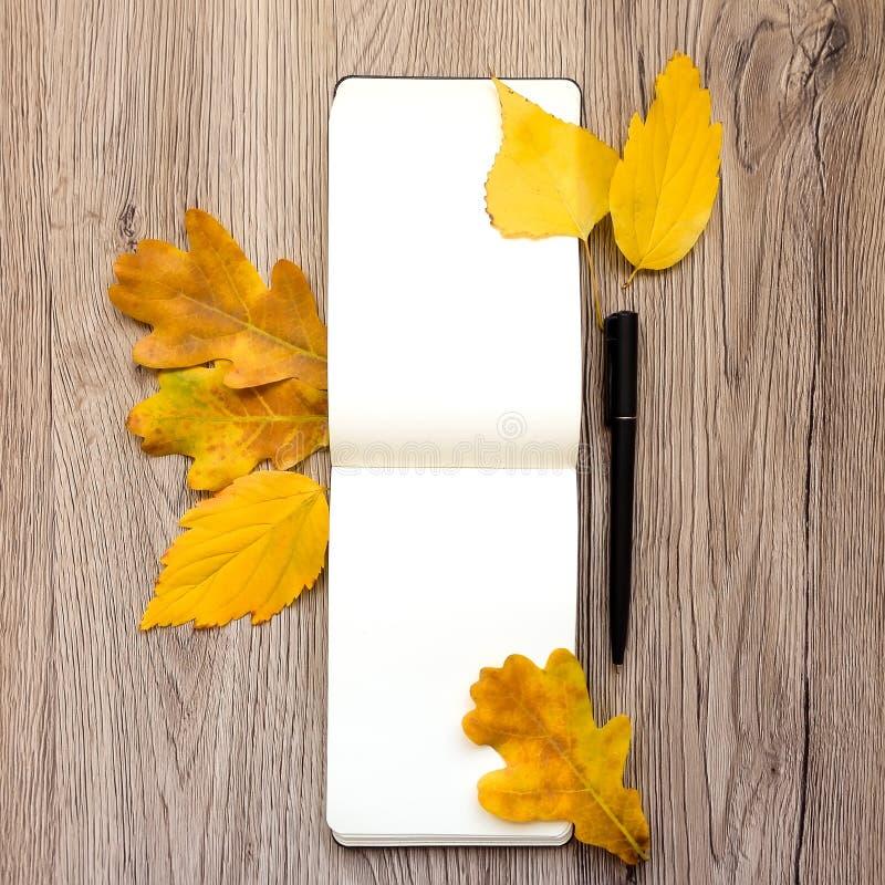 O close up do caderno e da pena, decorado com amarelo do outono sae e ramifica Vista superior, configuração lisa foto de stock