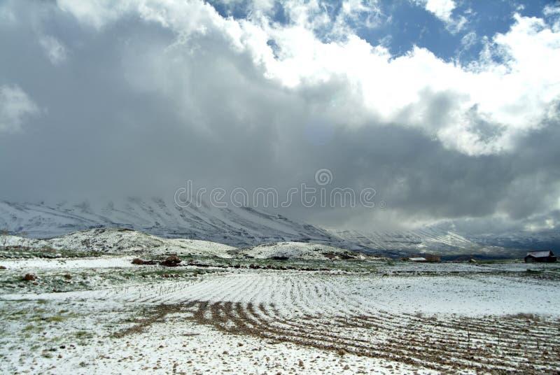 O ` coberto de neve s do fazendeiro coloca nas inclinações de Qurnat como Sawda em Líbano imagem de stock royalty free