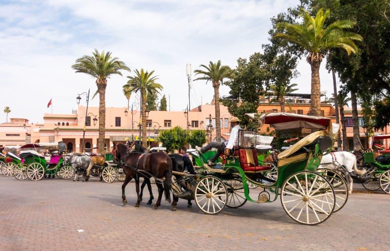 O cocheiro está relaxando em seu transporte puxado por cavalos imagem de stock