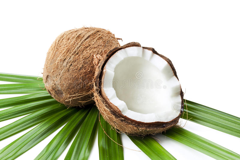 O coco e a metade na folha da palmeira isolaram-se fotografia de stock