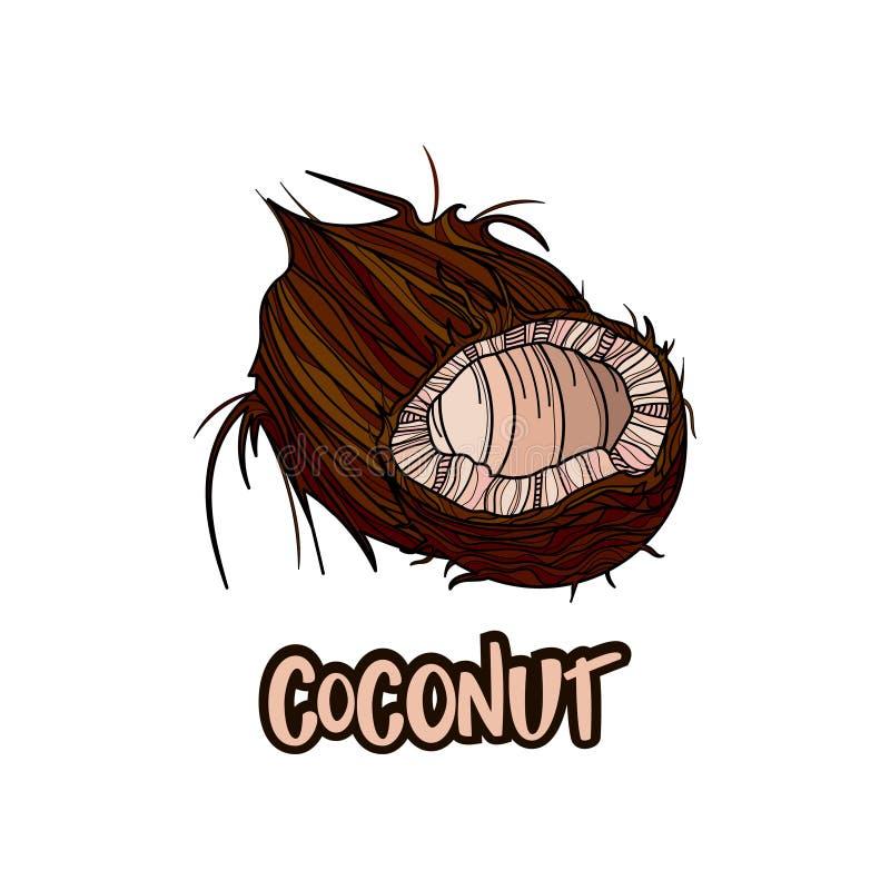 O coco frutifica cartaz no estilo dos desenhos animados ilustração royalty free
