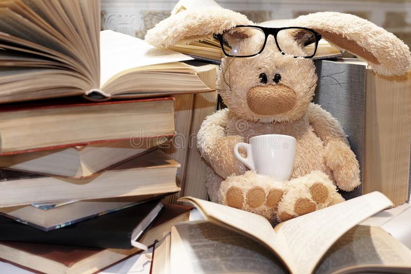 O coelho macio do brinquedo senta-se entre uma pilha dos livros imagens de stock royalty free