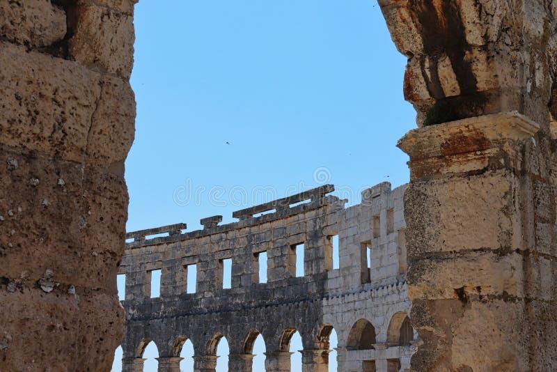 o colosseum em Roma no verão imagem de stock