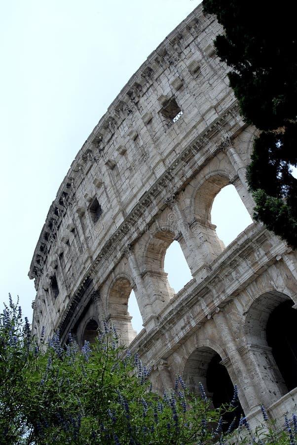 O Colosseum, Roma foto de stock royalty free