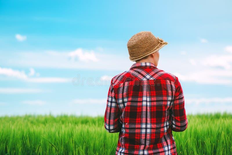 O conceito do cultivo responsável, fazendeiro fêmea no cereal colhe o fi foto de stock