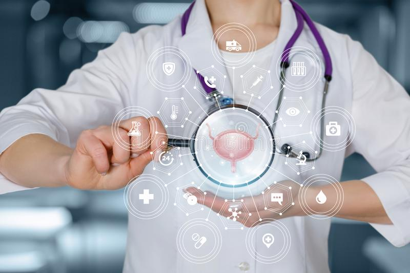 O conceito do diagnóstico e tratamento da bexiga fotos de stock