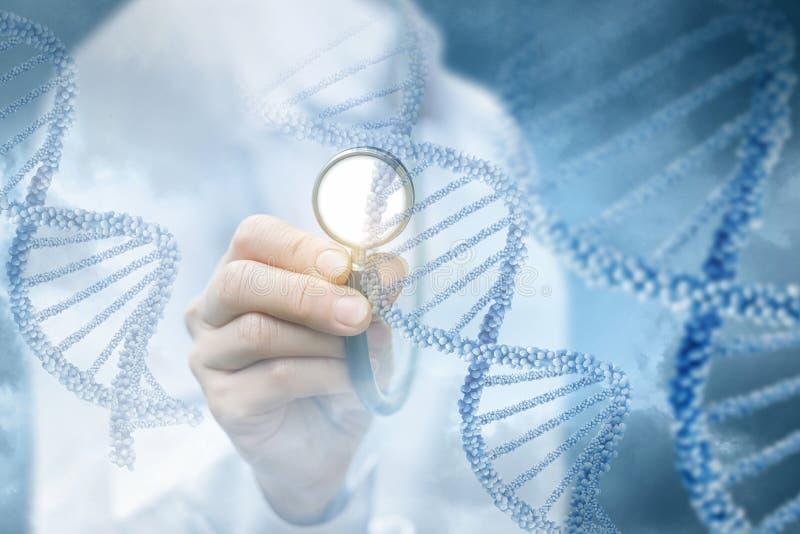 O conceito do estudo do ADN humano fotografia de stock