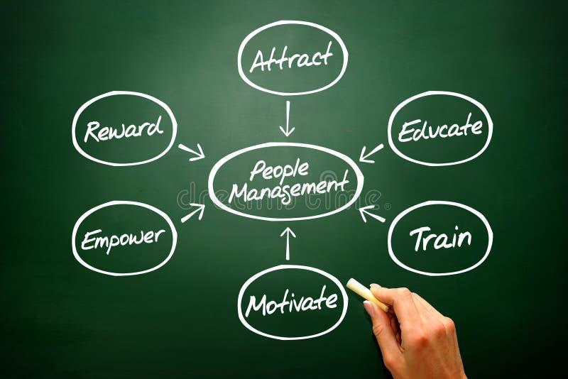 O conceito do fluxograma da gestão dos povos, diagrama dá forma em b imagem de stock
