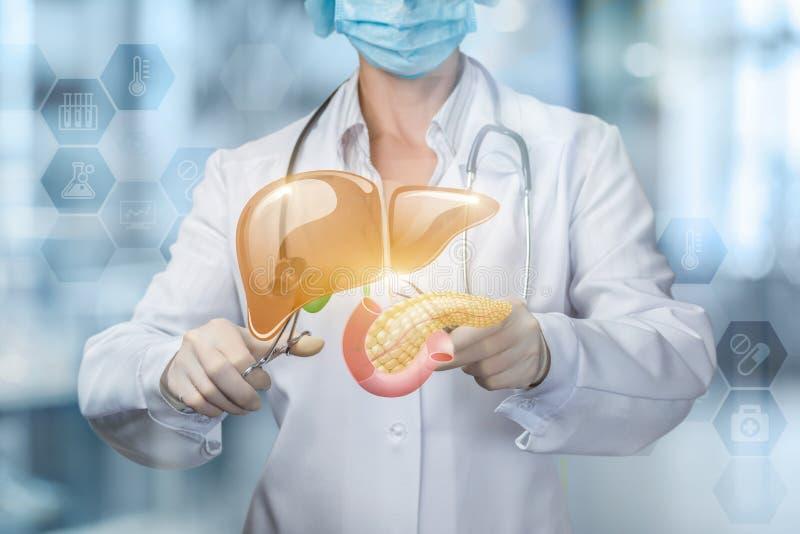 O conceito do tratamento cirúrgico do fígado e do pâncreas imagem de stock royalty free