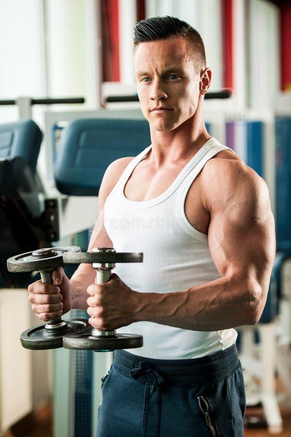 O concorrente da aptidão de Phisique dá certo em pesos de levantamento do gym imagens de stock