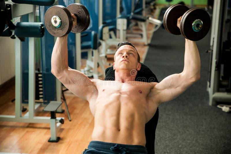 O concorrente da aptidão de Phisique dá certo em pesos de levantamento do gym fotos de stock