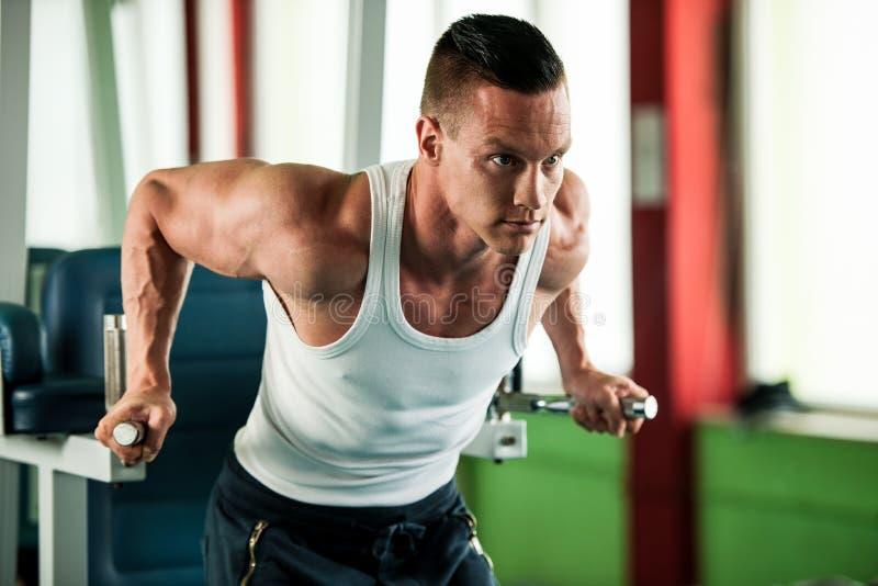 O concorrente da aptidão de Phisique dá certo em pesos de levantamento do gym foto de stock royalty free
