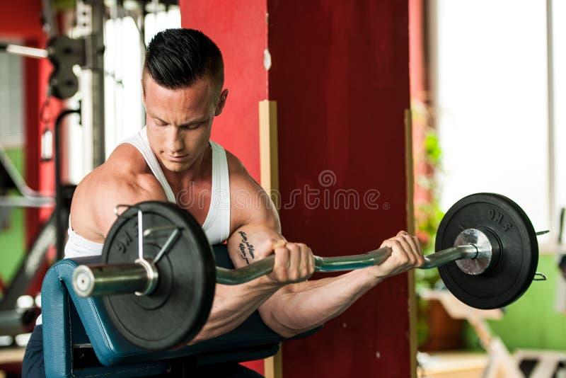 O concorrente da aptidão de Phisique dá certo em pesos de levantamento do gym foto de stock