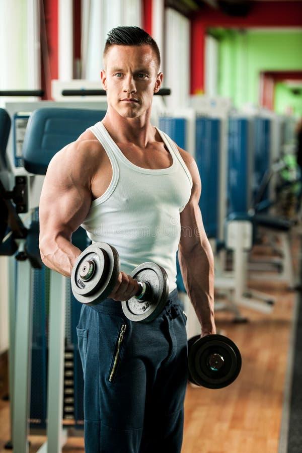 O concorrente da aptidão de Phisique dá certo em pesos de levantamento do gym imagens de stock royalty free