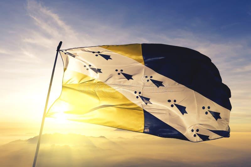 O Condado de Norfolk da tela de pano de matéria têxtil da bandeira de Inglaterra que acena na névoa superior da névoa do nascer d ilustração royalty free