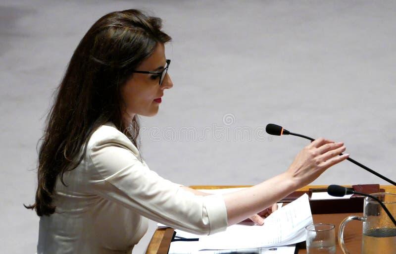 O Conselho de segurança 7760 United Nations de encontro fotografia de stock royalty free