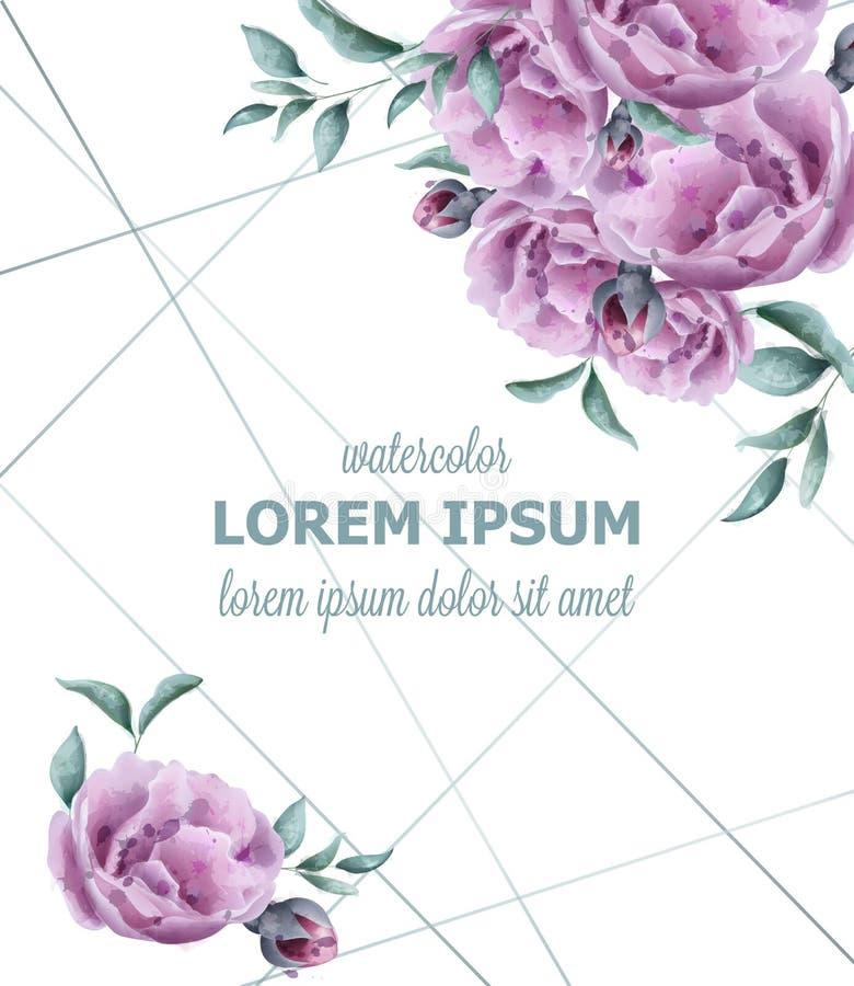 O convite do casamento aumentou vetor do quadro da aquarela das flores A violeta bonita do vintage colore decorações florais ilustração stock
