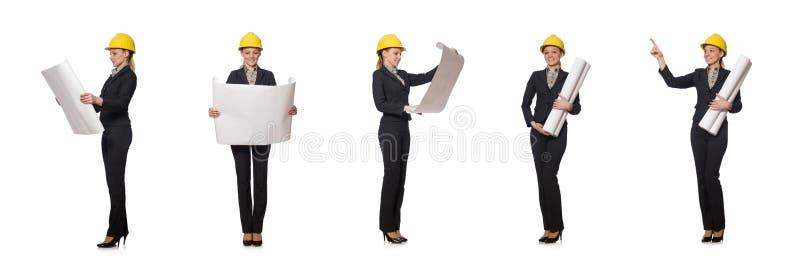 O coordenador da mulher com projetos fotografia de stock
