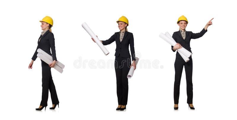 O coordenador da mulher com projetos fotos de stock royalty free