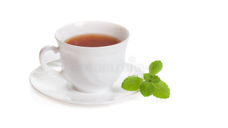 O copo branco do ch? com a erva do melissa da hortel? isolou-se foto de stock