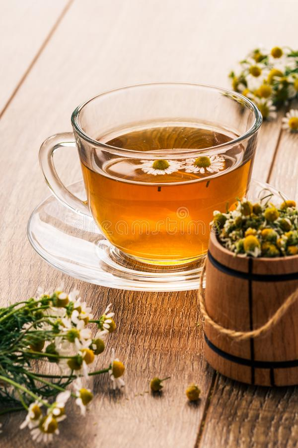 O copo de vidro do chá verde com camomila branca floresce imagens de stock royalty free