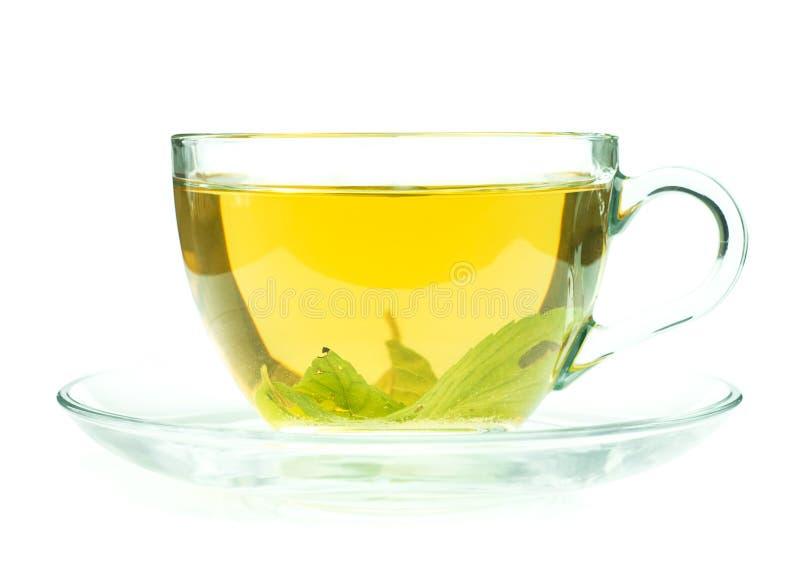 O copo do chá verde fresco isollated no branco imagens de stock