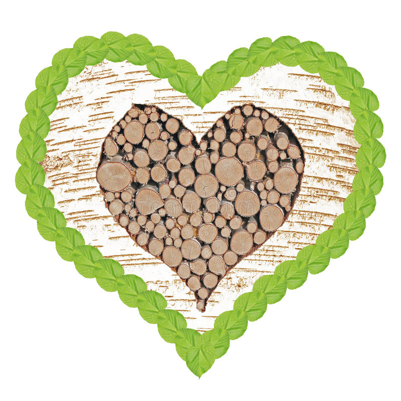 O coração da árvore de vidoeiro com quadro do Linden folheia imagem de stock royalty free