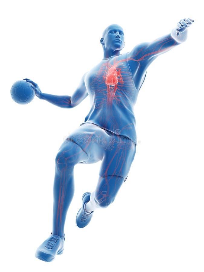 o coração de um jogador do handball ilustração stock