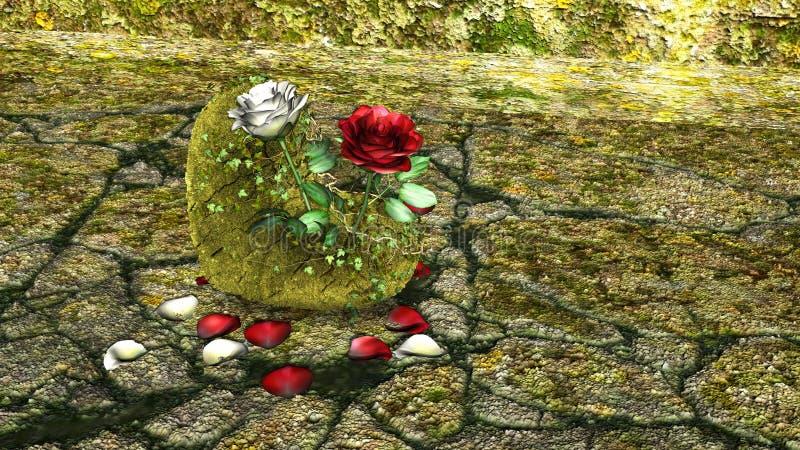 O coração deu forma à rocha com as rosas vermelhas e brancas sobre um fundo com rochas imagens de stock royalty free
