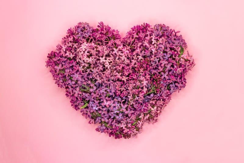O coração deu forma a flores lilás no fundo cor-de-rosa S?mbolo do amor Vista superior fotografia de stock royalty free