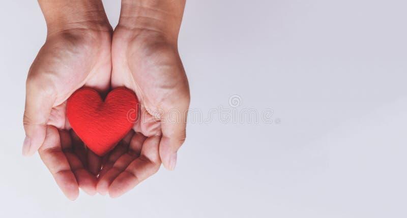 O coração disponível para a filantropia/mulher que guarda o coração vermelho nas mãos para o dia de Valentim ou para doar para aj foto de stock