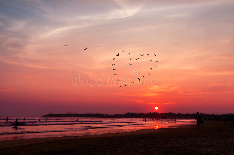 O coração dos pássaros mostra em silhueta o voo acima do mar contra o por do sol fotografia de stock