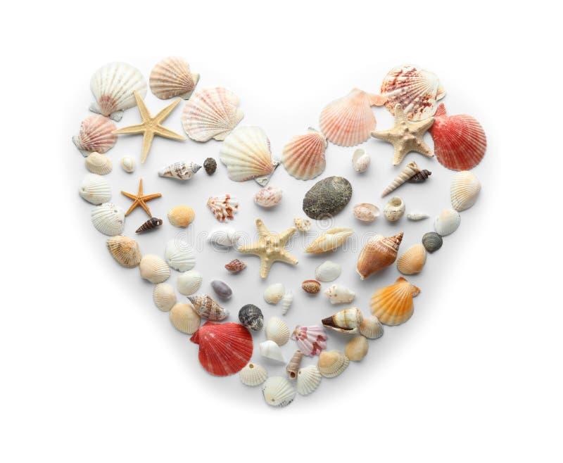 O coração fez de escudos diferentes do mar no fundo branco fotografia de stock