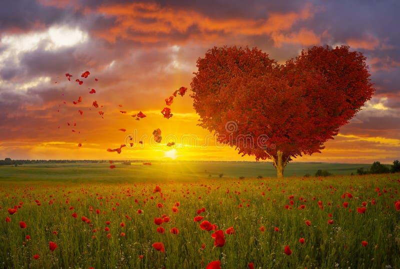 O coração vermelho deu forma ao árvore-símbolo do dia do amor e do ` s do Valentim fotos de stock royalty free
