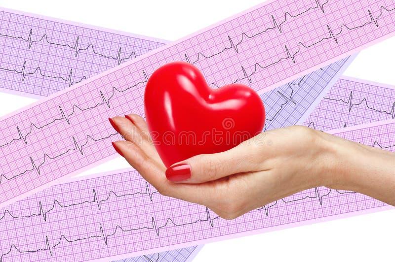 O coração vermelho na mulher cede a análise do coração, eletrocardiograma foto de stock royalty free