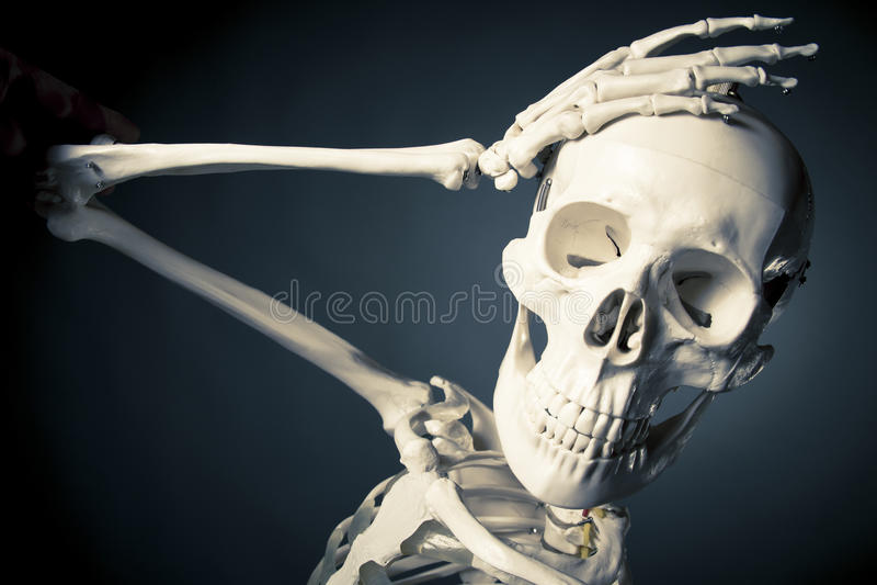 O corpo de esqueleto humano, esquece o conceito imagem de stock